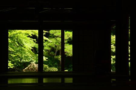緑の南禅院