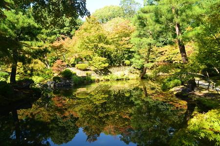 秋景色を映して