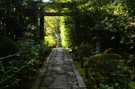 東照宮への道
