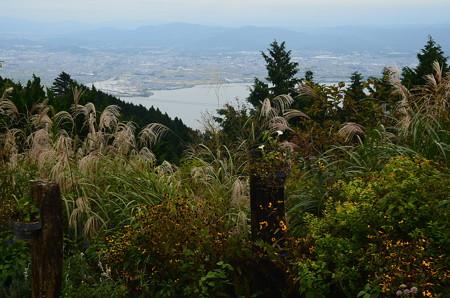 薄の向こうに琵琶湖が広がります~