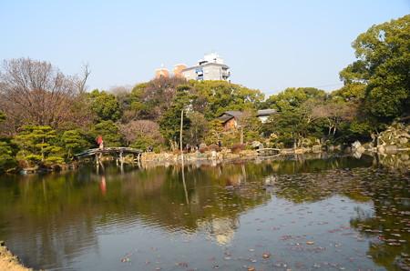 早春の印月池
