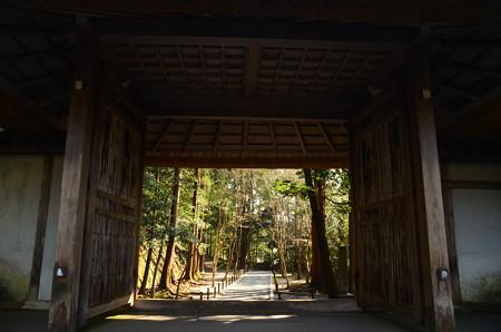 山門越しの参道