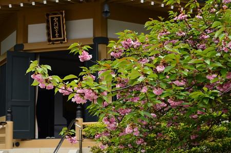 宥清寺の関山