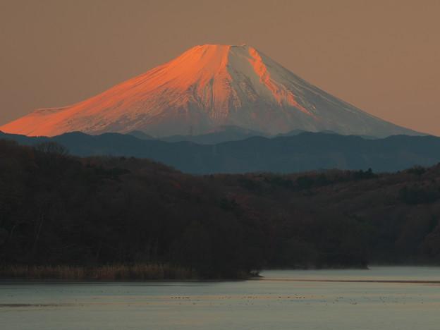 狭山湖の紅富士