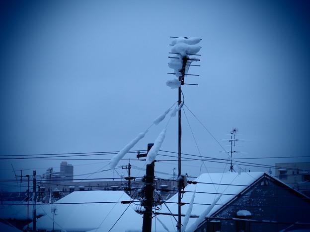 アンテナの雪(アナ雪)