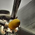 Photos: 雀と飛行機