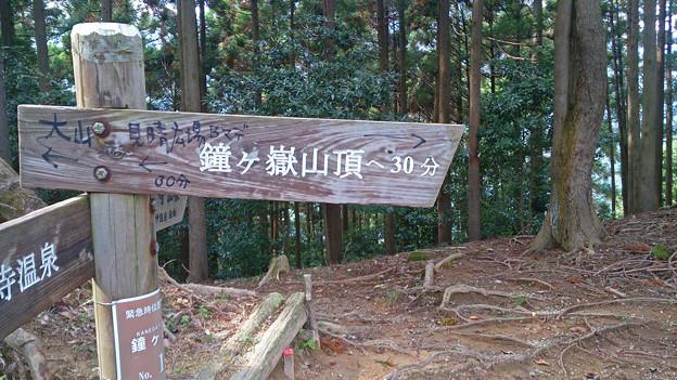 神奈川県厚木市 鐘ケ嶽登山道 もうすぐ山頂
