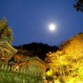 月と石世観音3