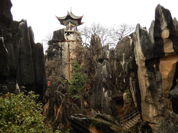 雲南省 世界遺産 石林 #9