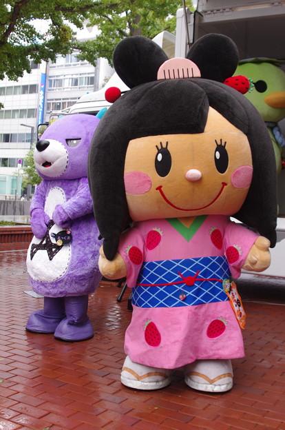 北海道バスフェスティバル2015にて (2)