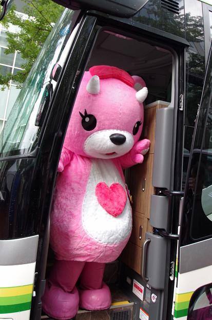 北海道バスフェスティバル2015にて  (5)
