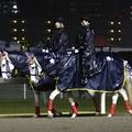 写真: 川崎競馬の誘導馬04月開催 重賞Ver-120409-04-large