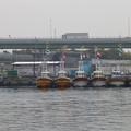Photos: 岸和田漁港
