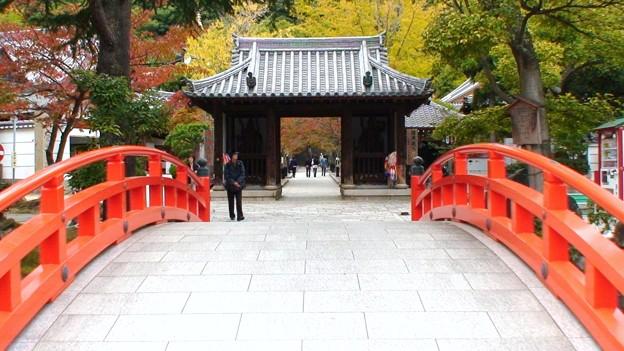 須磨寺 (5)
