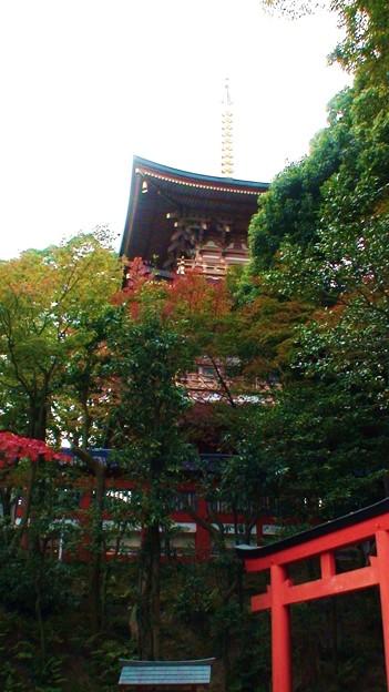 須磨寺 (7)