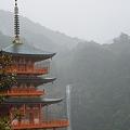 Photos: 雨の那智の滝