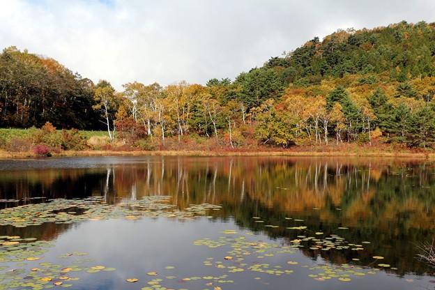 一沼紅葉の水鏡