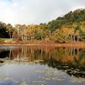 Photos: 一沼紅葉の水鏡
