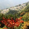 Photos: 紅葉と天空の里