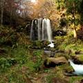 唐沢の滝を望む
