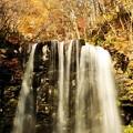黄葉と唐沢の滝