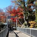 Photos: 白鶴橋