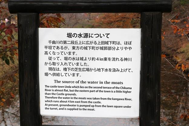 堀の水源について