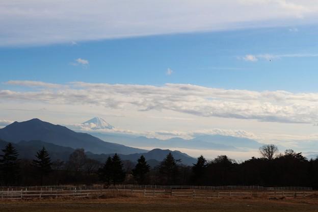 清泉寮牧場の眺め