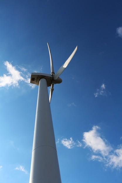 Photos: 風力発電