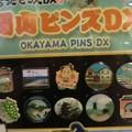 Photos: 岡山ピンズDX