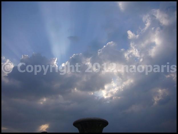 写真: P3060300