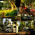 Photos: Campground。。