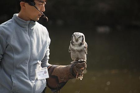 掛川花鳥園 H22.11.16 5