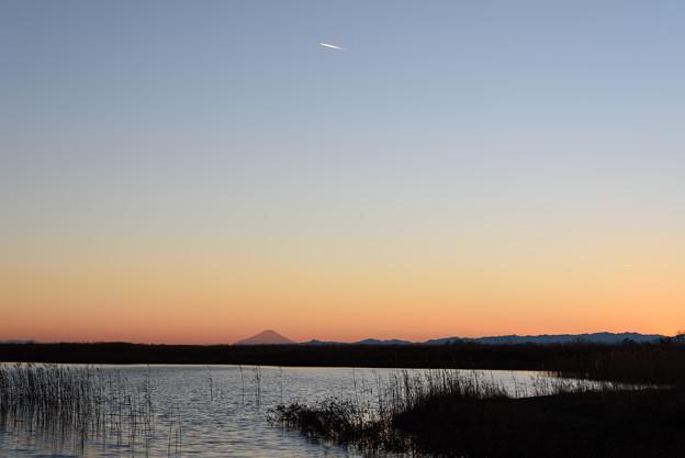 渡良瀬遊水地の夕焼け20160101