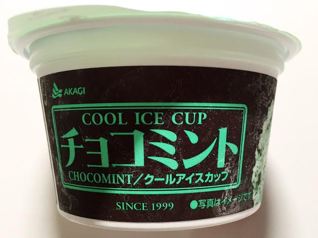 20150503-01『アカギ』チョコミントアイス03