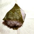 Photos: 『一久大福堂』の「さくら餅」01