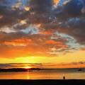 写真: 湘南海岸の耀き
