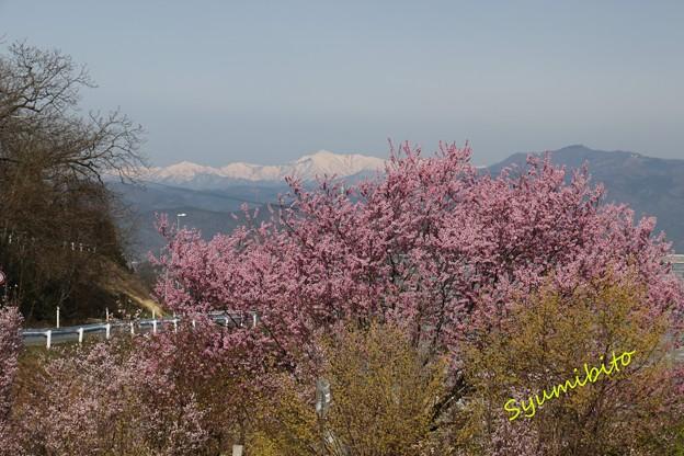 蔵王山麓~朝日連峰を望む
