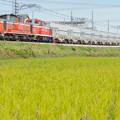 JR武豊線(衣浦臨海鉄道) 緒川~石浜
