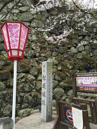 20160414松坂城跡?