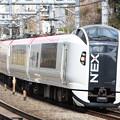 Photos: E259系クラNe005編成 特急成田エクスプレス29号