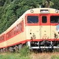 写真: キハ58形キハ58-569 急行平戸号