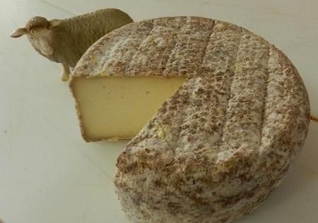 羊のチーズ(札幌)