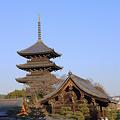 写真: 東寺(教王護国寺)