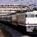 高崎線 EF60-19+50系+12系+50系+EF55-1