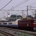 東北貨物線 EF81-139+485系x6
