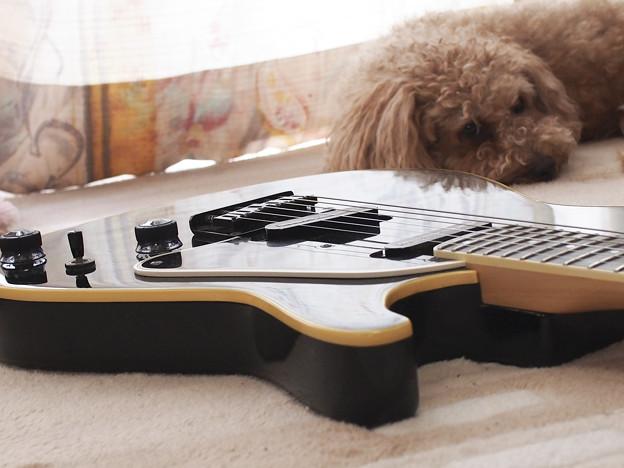 Guitar001 ブラック
