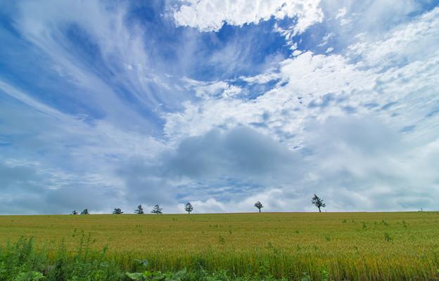 雲が綺麗だった