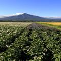 写真: 北海道風景2014_45