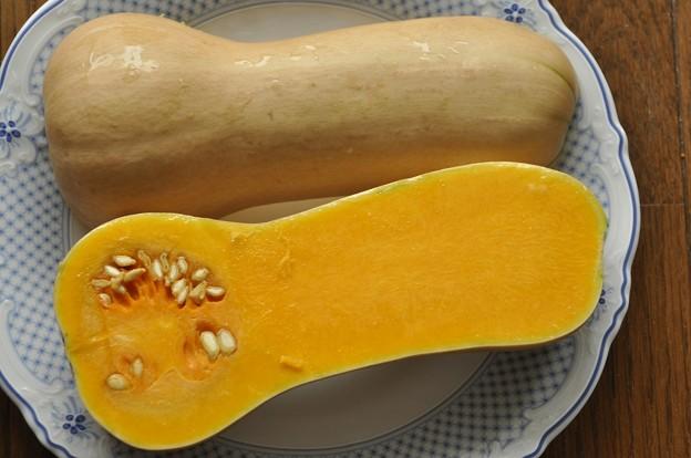 8月23日、収穫物(バターナッツかぼちゃ)?